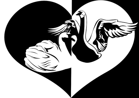 Two swans in the background of the heart  Black and white illustration  Vector