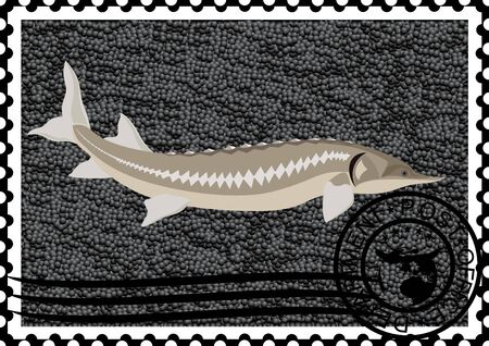 La ilustración de un sello de correos del esturión y el caviar