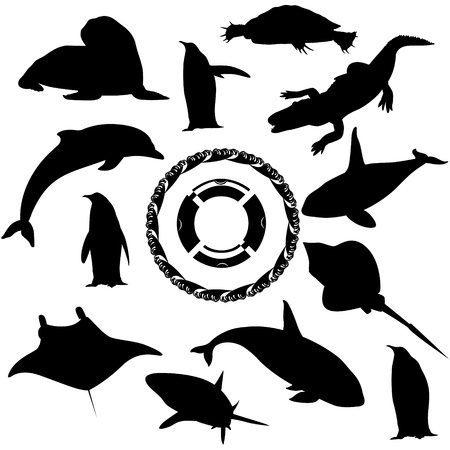 Contours of sea inhabitants  Black and white illustration  Vector