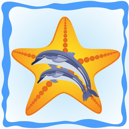 occupant: Two dolphins on the background of the sea star