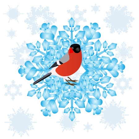 Bullfinch sitting on an abstract snowflake  Illustration on white background