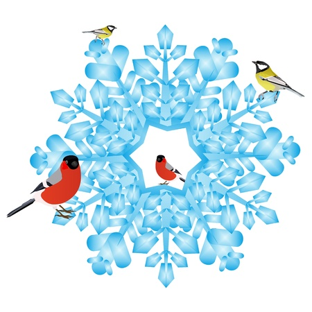 Birds are sitting on an abstract snowflake  Illustration on white background  Stock Vector - 15214785