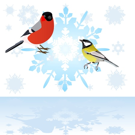 Birds are sitting on an abstract snowflake  Illustration on white background Stock Vector - 15214782