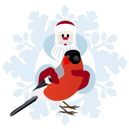 Bullfinch in the hands of Santa Claus on a background of abstract snowflakes  The illustration on a white background Stock Vector - 15214770
