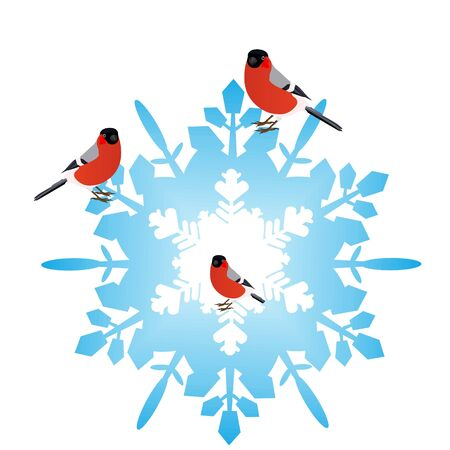 Bullfinch sitting on an abstract snowflake  Illustration on white background Stock Vector - 15214778