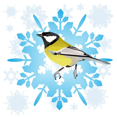 Tit sitting on the abstract snowflake  Illustration on white background Stock Vector - 15214779