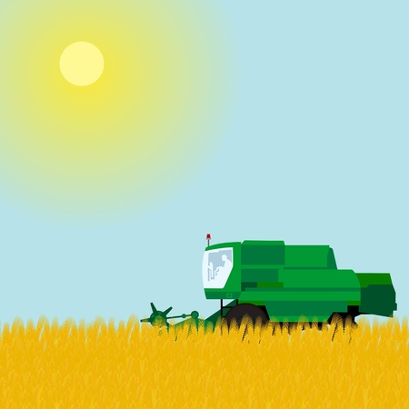 Agricultural machinery for harvesting. Combine harvester in wheat field. Vector
