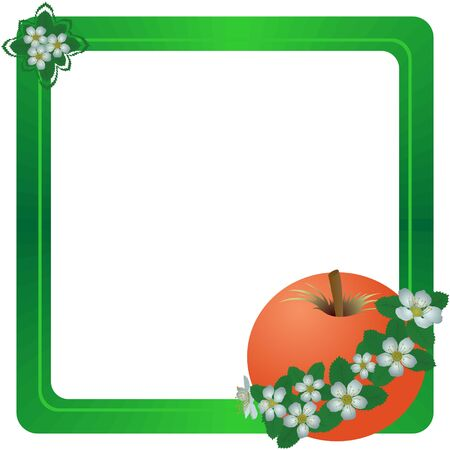 stamen: Apple and apple flowers. The illustration on a white background.