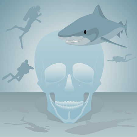 Human skull, divers and shark in the sea  Vector