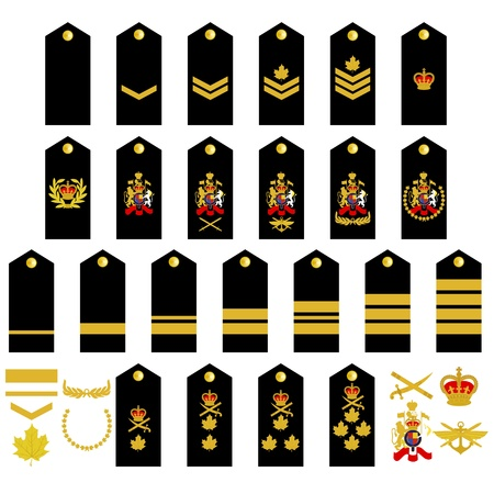 rank: Epaulets, military ranks and insignia  Illustration on white background