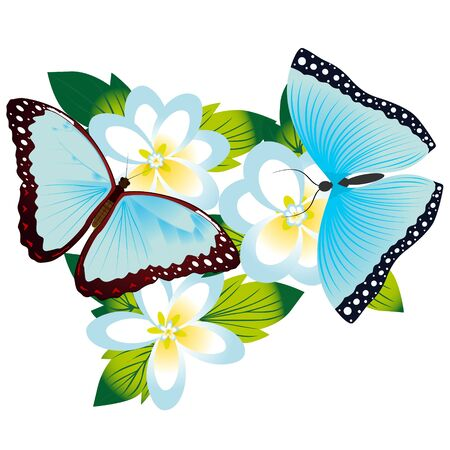 On a flower the butterfly sits. An illustration on a white background. Stock Vector - 16301048