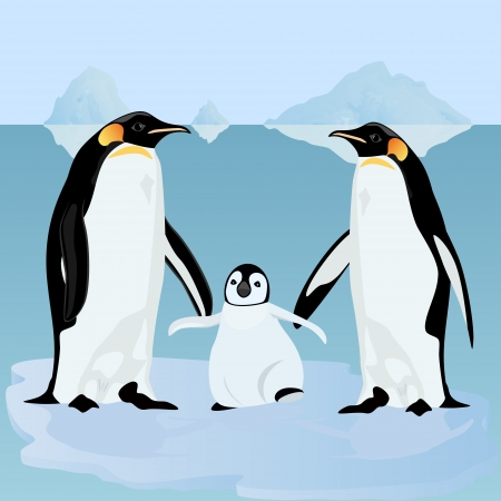 Two adult penguins near the cub stand on an ice floe. Vector