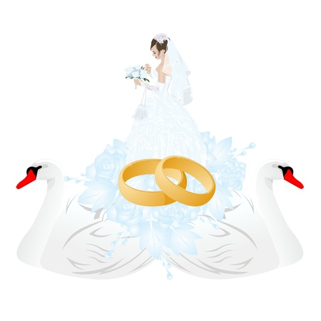 Two white swans, two gold wedding rings and groom. Stock Vector - 17121877