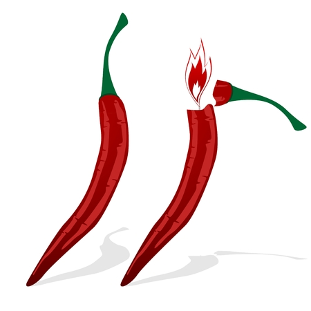 cayenne: Cigarette Lighter made   in the form of cayenne pepper  Illustration on white background