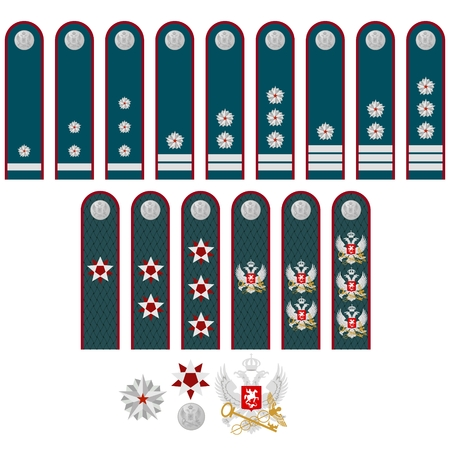 affiliation: Military ranks and insignia of the tax service of the world. Illustration on white background.