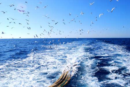 mediterraneo: Pesca a strascico Mar mediterraneo