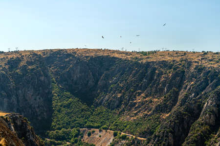 Birds of prey flying over the mountains in lso Arribes del Duero from the mirador del fraile, salamnca, spain Stock Photo