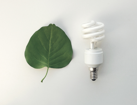 source of light: Recycling, electricity, environment and ecology concept - energy saving lighting bulb and green leaf on a white background Stock Photo