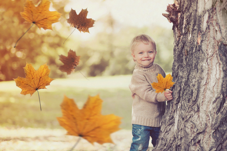 Portrait of happy smiling child playing having fun in warm autumn day with flying yellow maple leaves Stock Photo