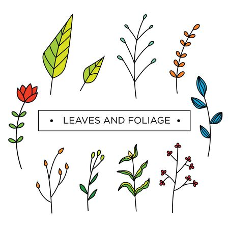 Set of floral, foliage, leaves and flower vector template. 矢量图像