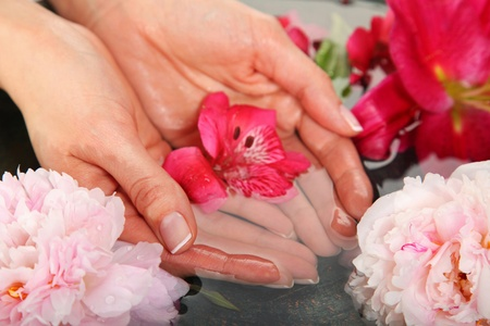 Spa Concept  - maniciure, water and flowers Standard-Bild