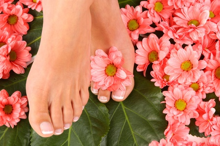 Beauty treatment photo of nice pedicured feet