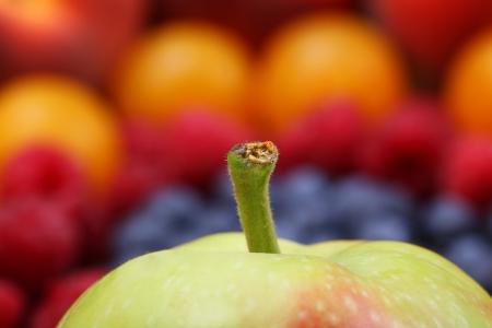 Viele verschiedene Arten von Obst Standard-Bild - 18992840
