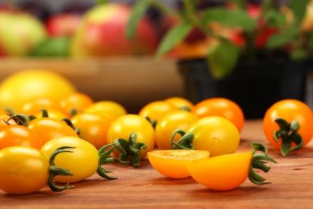 Food Products - Frische - Tomaten Zweig Standard-Bild - 18992837