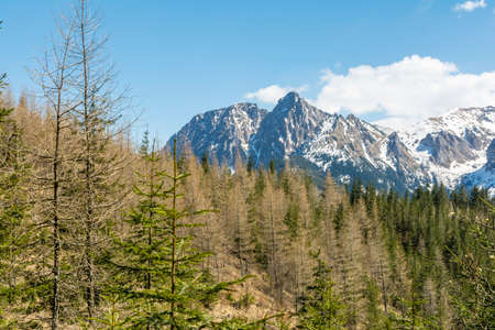 giewont: Giewont is a mountain massif in the Tatra Mountains of Poland Stock Photo