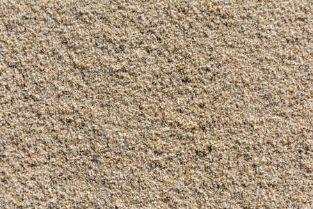 loose: Sand is a loose sedimentary rock - texture