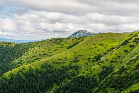 green ridge: Summit (Kominiarski Wierch) emerges over the green ridge