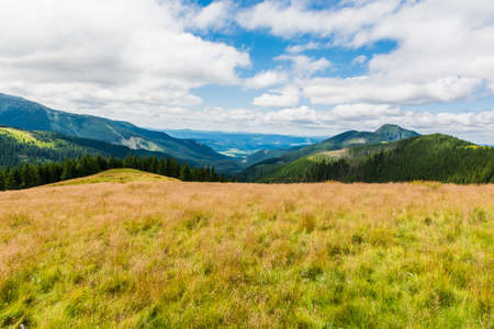 mugo: Summer panorama seen from the clearing in the mountains Stock Photo