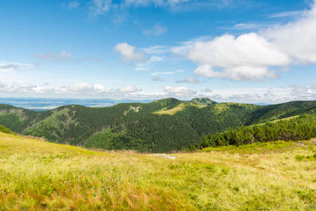 mugo: Summer mountain landscape season in the Tatras Stock Photo