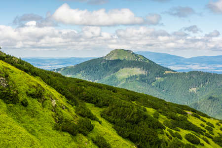 mugo: Osobita peak in the Western Tatras in Slovakia Stock Photo