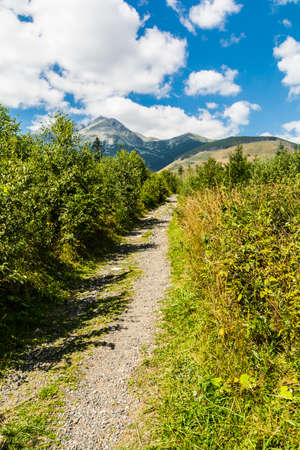 green landscape: Trail with mountains in the background in the Tatras in Slovakia