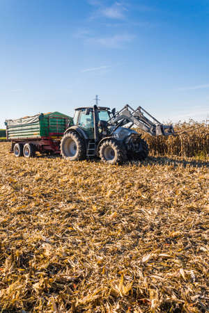 zea mays: Biskupice radowskie, Poland - October 2, 2015: Tractor with a forklift and a green trailer is standing on a corn field