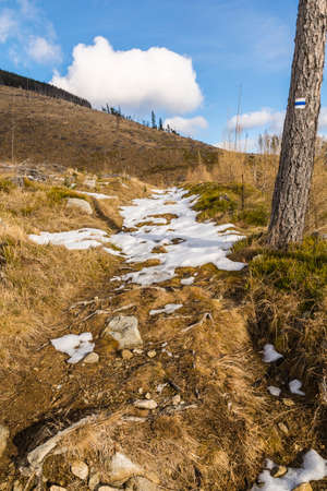 arrears: Remnants of snow in arrears on the trail.