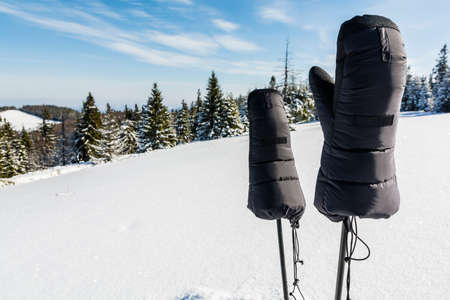 expeditionary: Very warm expeditionary gloves for trekking poles.
