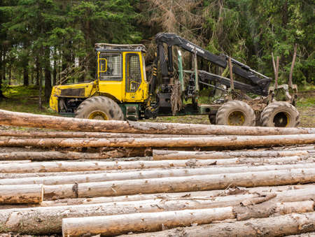 forestry: Ziar, Slovakia - September 04, 2016: Forwarder is a forestry vehicle that carries big felled logs from the stump to a roadside landing.