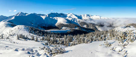 tatra: Winter in the mountains. Forests and ridges covered with snow - panorama of Western Tatras.