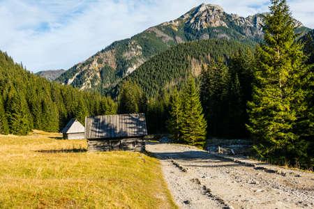 Historic shepherds huts in the Chocholowska clearing with an outstanding peak (Kominiarski Wierch) in the background. Poland. Zdjęcie Seryjne