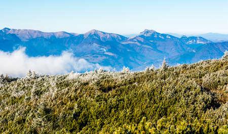 View of the Velky Rozsutec peak in the Mala Fatra range. Slovakia.