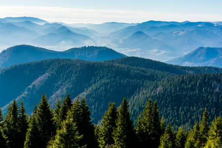 Morning mists between wooded mountain ranges - autumn landscape.