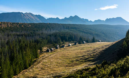 A view in the autumn afternoon at the old historical shepherd's huts in a Kopieniec clearing in the Tatra Mountains. Zdjęcie Seryjne