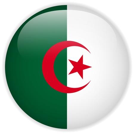 algerian flag: Vector - Algeria Flag Glossy Button Illustration