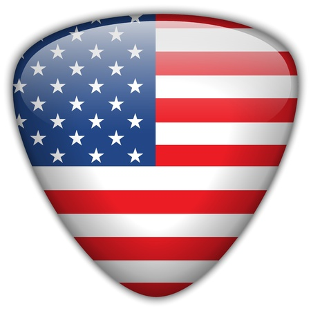 USA Flag Glossy Button Vector