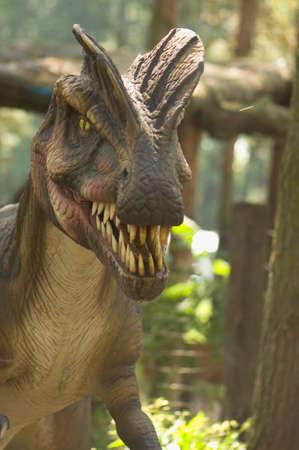 fossil: Dinosaur