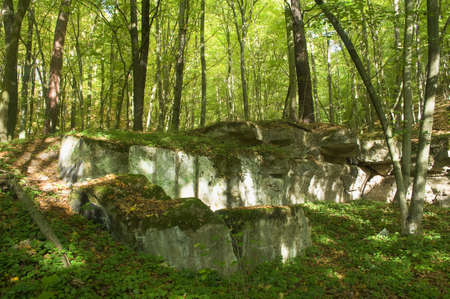 Bunker photo
