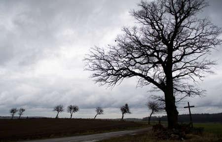 Tree, cross, road - Road through life Stock Photo - 11494424