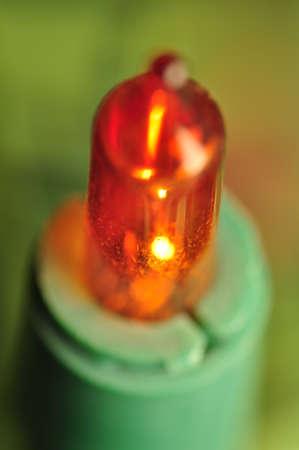 lamp fir photo